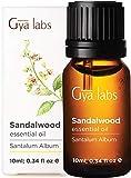 Gya Labs Ätherisches Sandelholzöl – Konzentrierter Geist Ätherische Öle für Besseren Fokus und Gesunden Teint 10 ml – 100 % Reine Ätherische Öle Sandelholz für Aromatherapie und Topische Anwendung